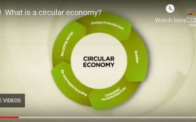 What is a 'circular economy' and why Australia needs one