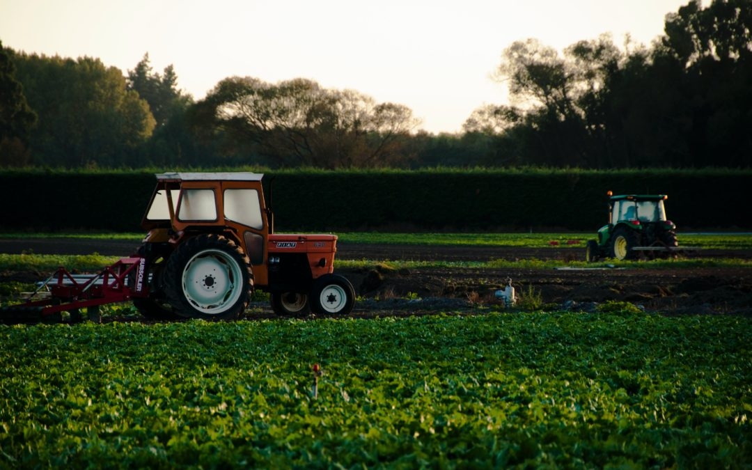 Making high value products from agricultural waste